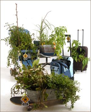 mobile garden examples